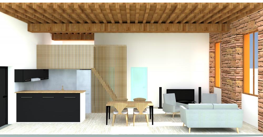 barn architecture, appartement Croix-Rousse